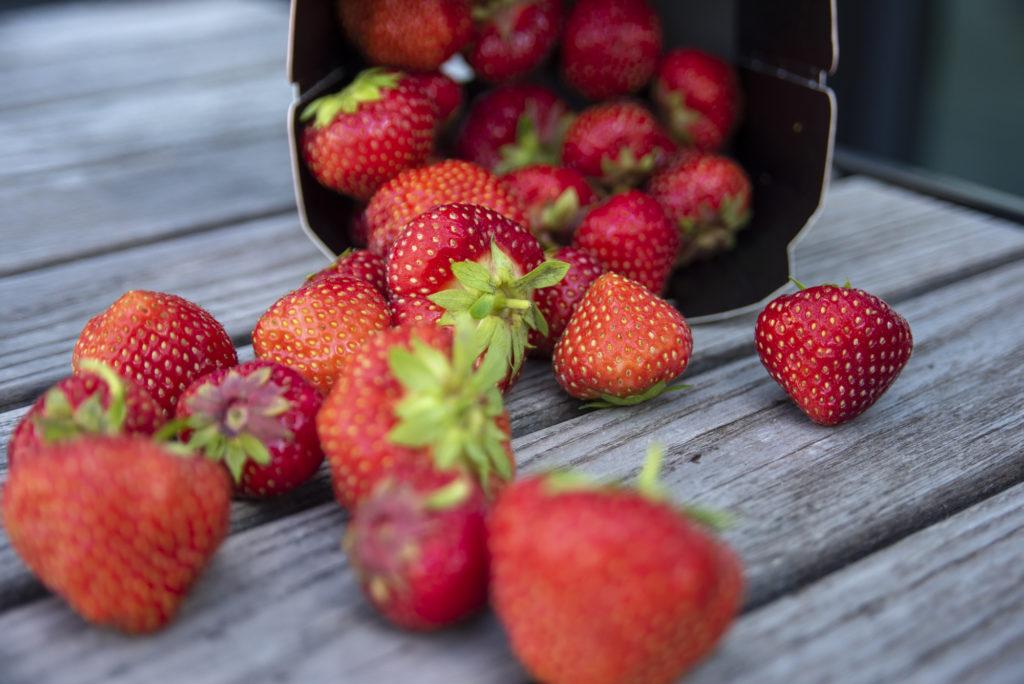 Deilige søte jordbær klar til å syltes